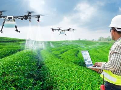 الزراعة الذكيّة.. تقنيات المستقبل لتحقيق الأمن الغذائي
